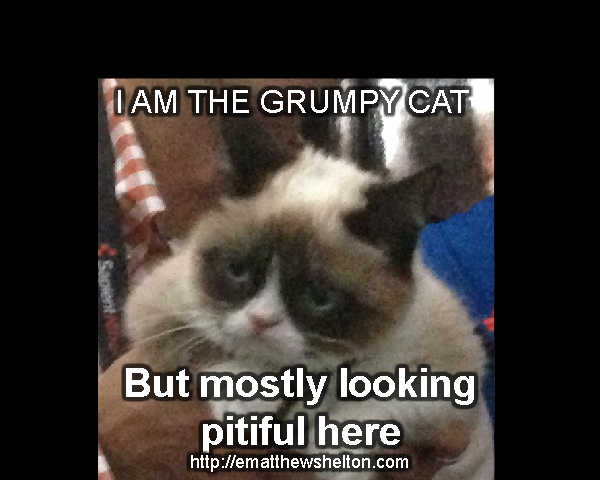 grumpy cat looking pitiful
